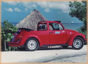 Best Rental Car Company On Cozumel